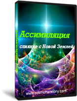 Курс «Ассимиляция с Новой Землей»